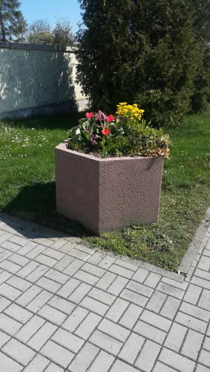 2018-04-20 Rozkvetlá nádoba před hřbitovem